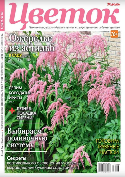 Цветок №13 за июль, 2019 года