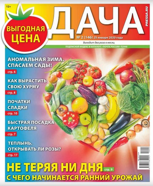 Дача №2 (январь/2020)