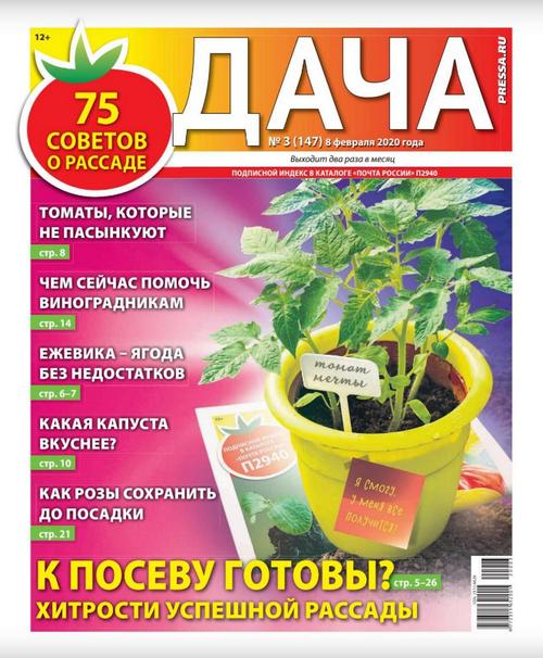 Дача №3 (февраль/2020)