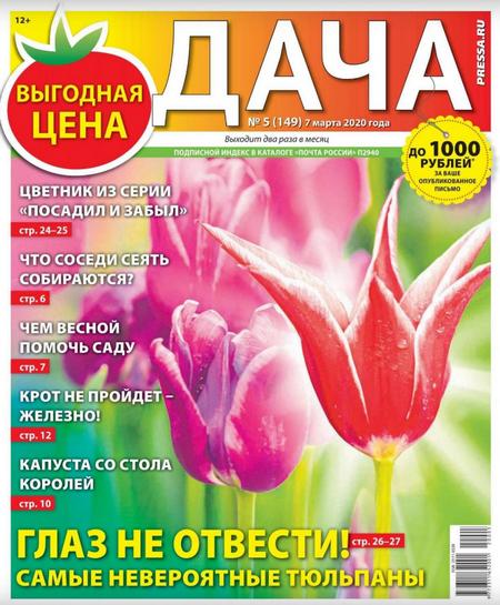 Дача №5 (март/2020)