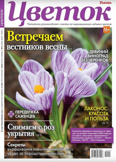 Цветок №5 (март/2020)