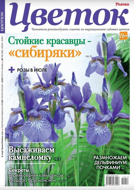 Цветок №12 (июнь/2020)