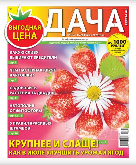 Дача №13, июль 2020