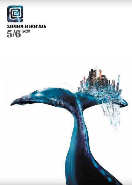 Химия и жизнь #5-6 [2020]