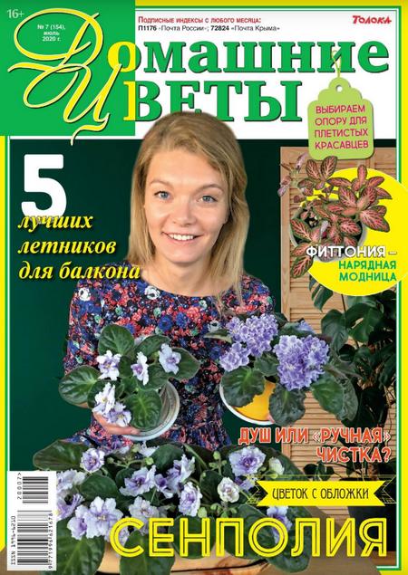 Домашние цветы №7, июль 2020