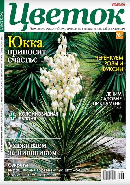 Цветок №32, июль 2020