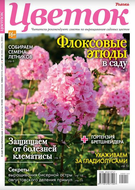 Цветок №14, июль 2020