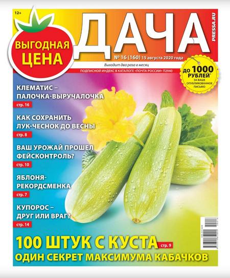 Дача №16, август 2020