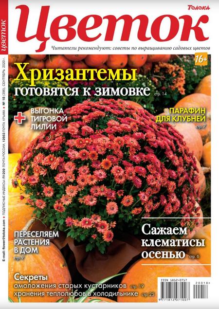 Цветок №18 [2020]