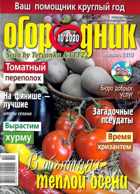 Огородник №10 (октябрь/2020)