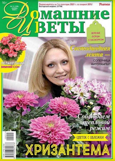 Домашние цветы №11, ноябрь 2020
