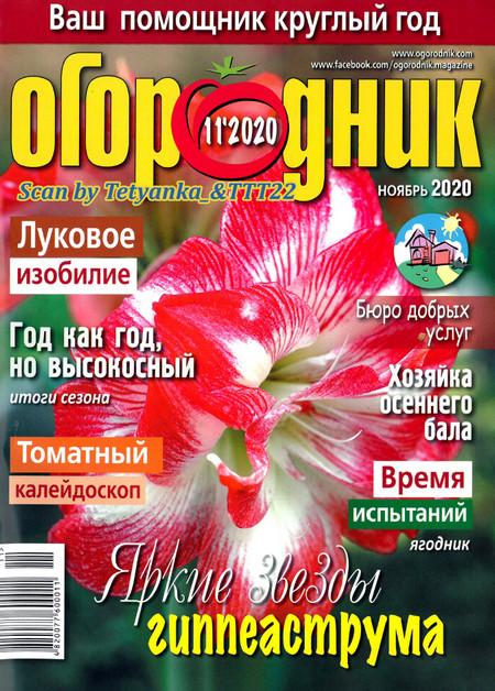 Огородник № 11 2020