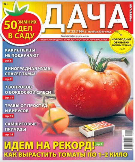 Дача №22 (ноябрь/2020)