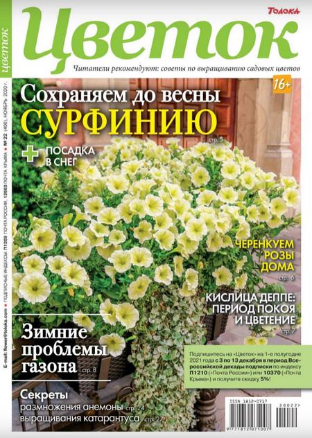 Цветок №22 (ноябрь/2020)
