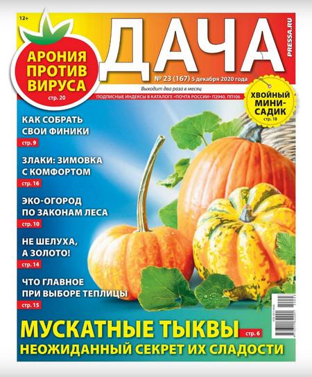 Дача №23 (декабрь/2020)