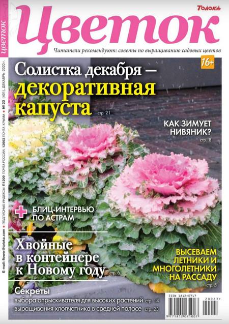Цветок №23 (декабрь/2020)