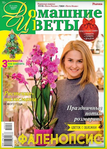 Домашние цветы №12 (декабрь/2020)