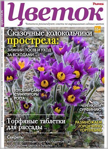 Цветок №1 2021