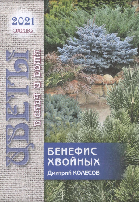 Цветы в саду и дома №1, январь 2021