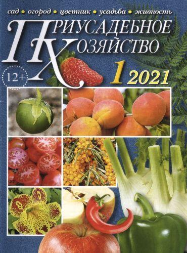 Приусадебное хозяйство №1, январь 2021