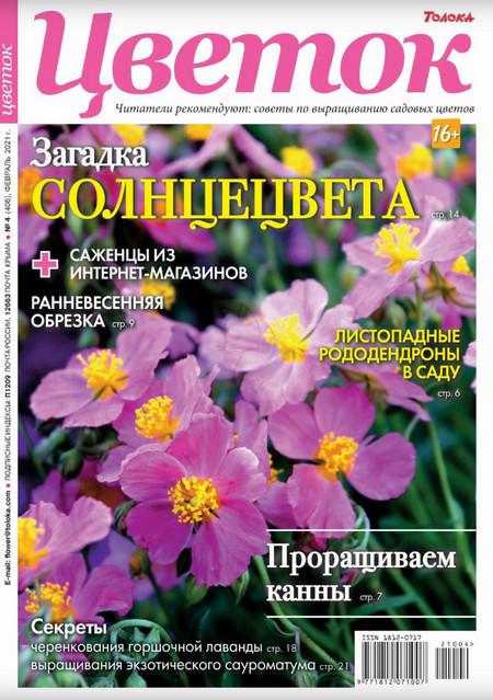 Цветок №4 февраль / 2021