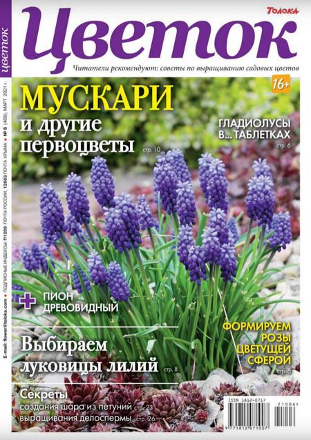 Цветок №6 (март/2021)