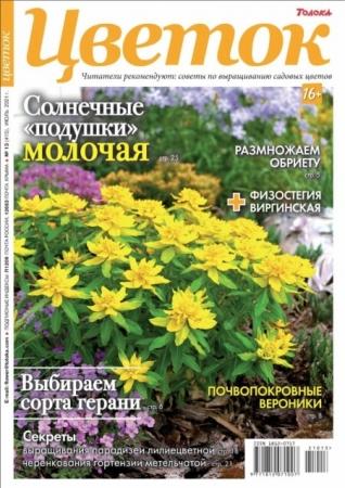 Цветок №13 (июль/2021)