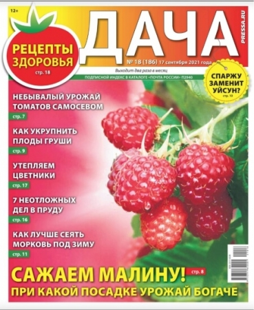 Дача №18 Сентябрь 2021 (186) - (Журнал)